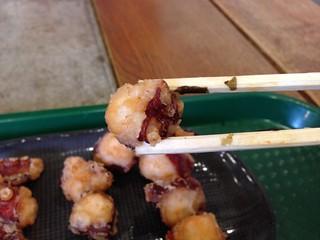 hokkaido-michinoeki-lake-saroma-saroma-zanmai-fried-octopus
