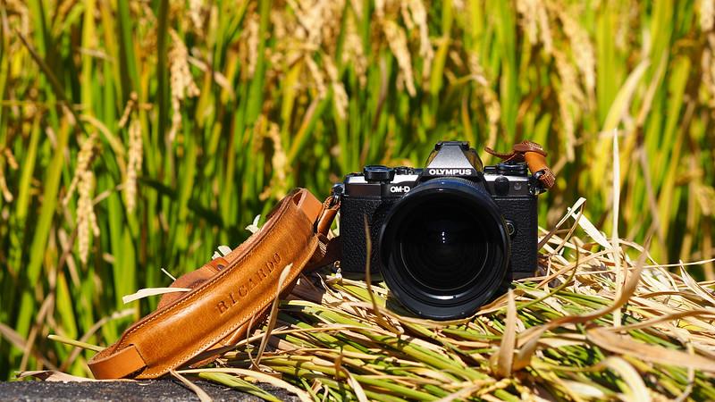 【Lens】Olympus M.ZD 7-14mm f/2.8 PRO 開箱開到九州去,二