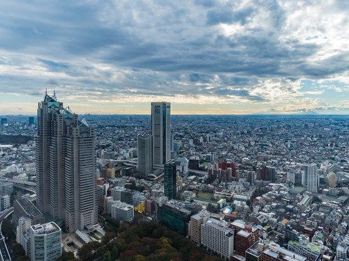I hope the Park Hyatt Tokyo (Hotel) from the Tokyo Metropolitan Government Building