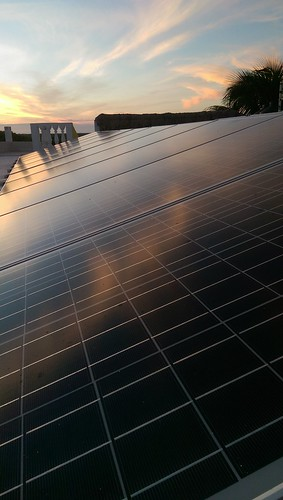 solar cells permaculture