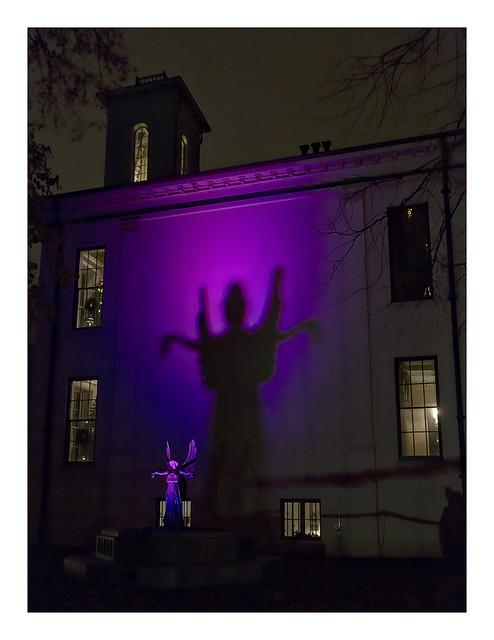 Garden Glow at MoBot 2015-11-20 8