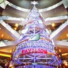 Tallest #swarovski #christmas tree in Asia