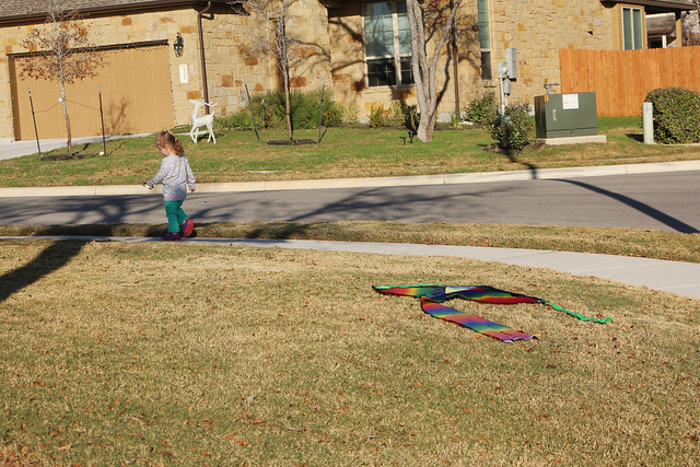 Trying to fly a kite