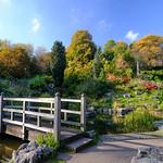 Japanese Garden, Avenham Park
