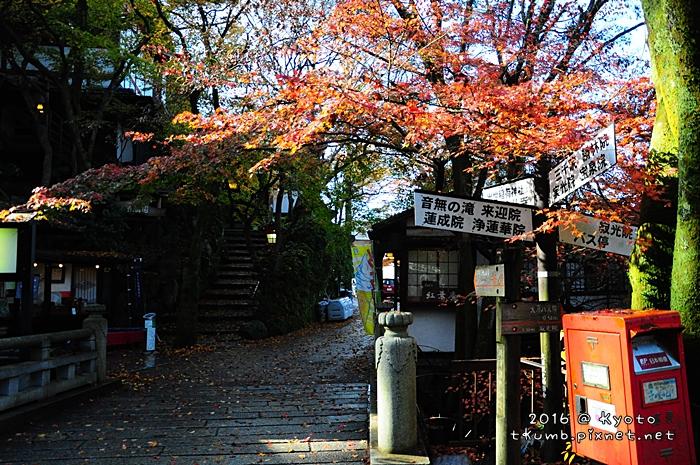 2016三千院 (1).JPG