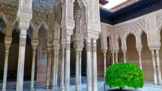 Gambar dari Alhambra. trafalgarinsider andalusia españa granada laalhambra laalhambraygeneralife palaciodegeneralife qalatalhamra spain spanishwonders trafalgar unescoworldheritagesite winter photolemur