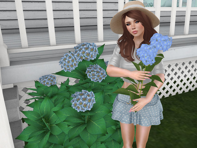 In the garden I