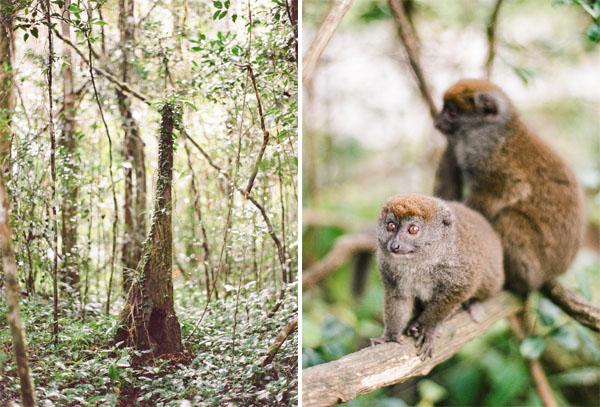 RYALE_Madagascar_Blog1_015
