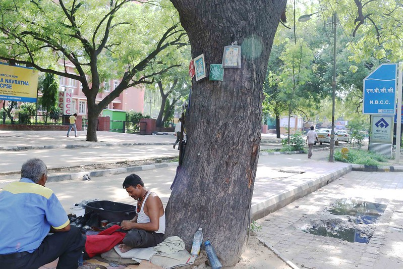 City Nature - Bachchan Dev Ram's Neem Tree, Lodhi Tree