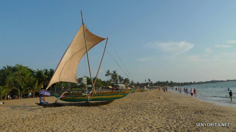 Sri Lanka Stopover
