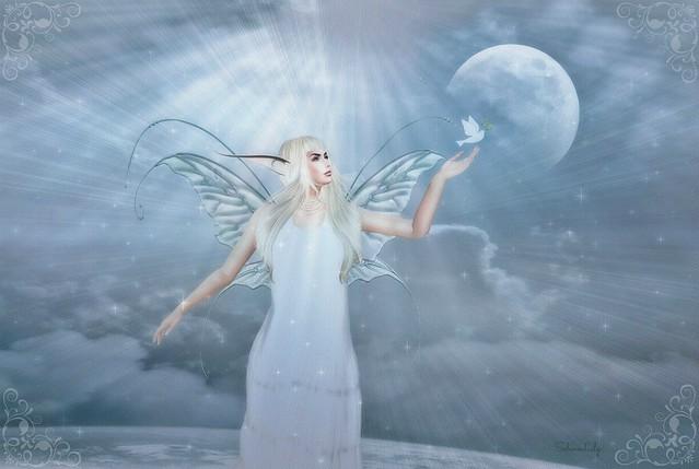 Wing & A Prayer