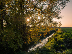 Autumn evening