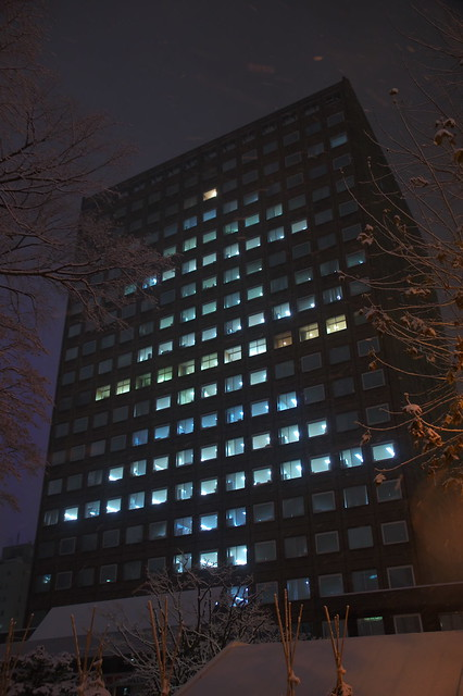札幌市役所本庁舎 クリスマスツリー_08
