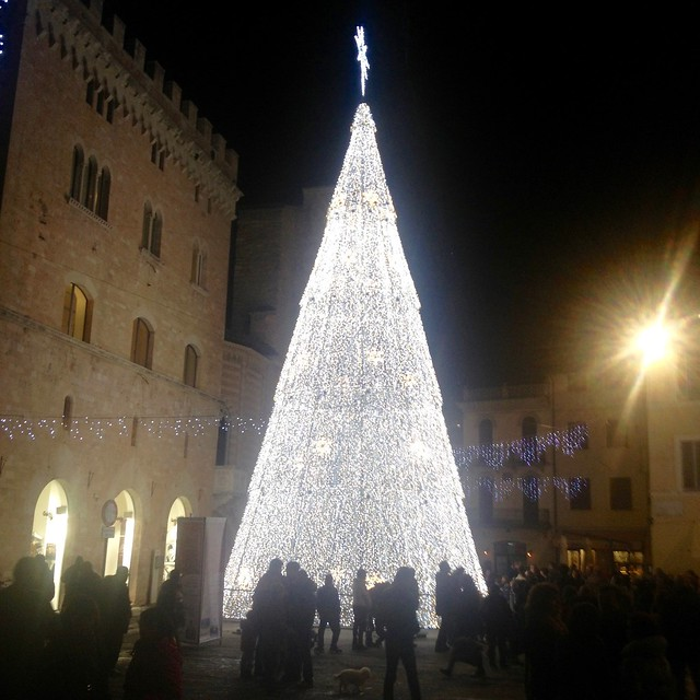 christmas-tree-italy-cr-brian-dore