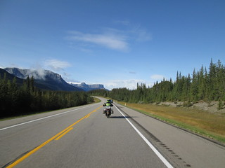 On the way from Hinton to Jasper National Park.