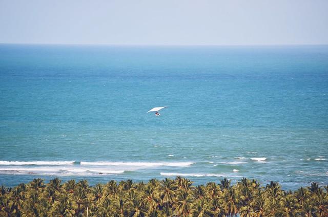 Mirante da Praia do Gunga - AL {setembro 2015}