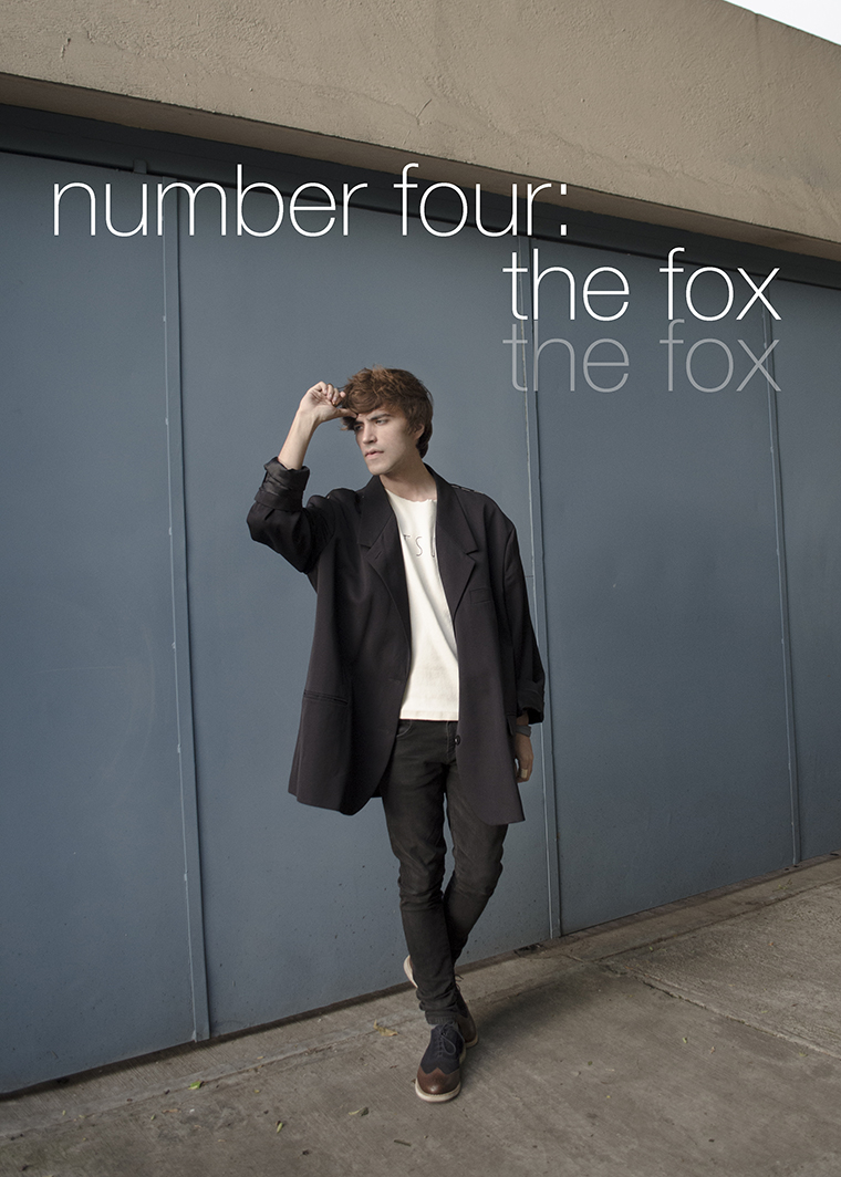 Number Four The Fox