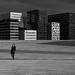 A walk amongst giants by Ron Jansen - EyeSeeLighT Photography
