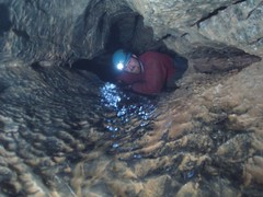 Crispin in the crawls after the Divers Pitch Image