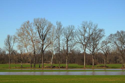 foreman arkansas usa nature outdoor landscape redriver riverside plant plants tree trees water stream flood field grassland plain sky skies grass river wet wetfeet bluesky