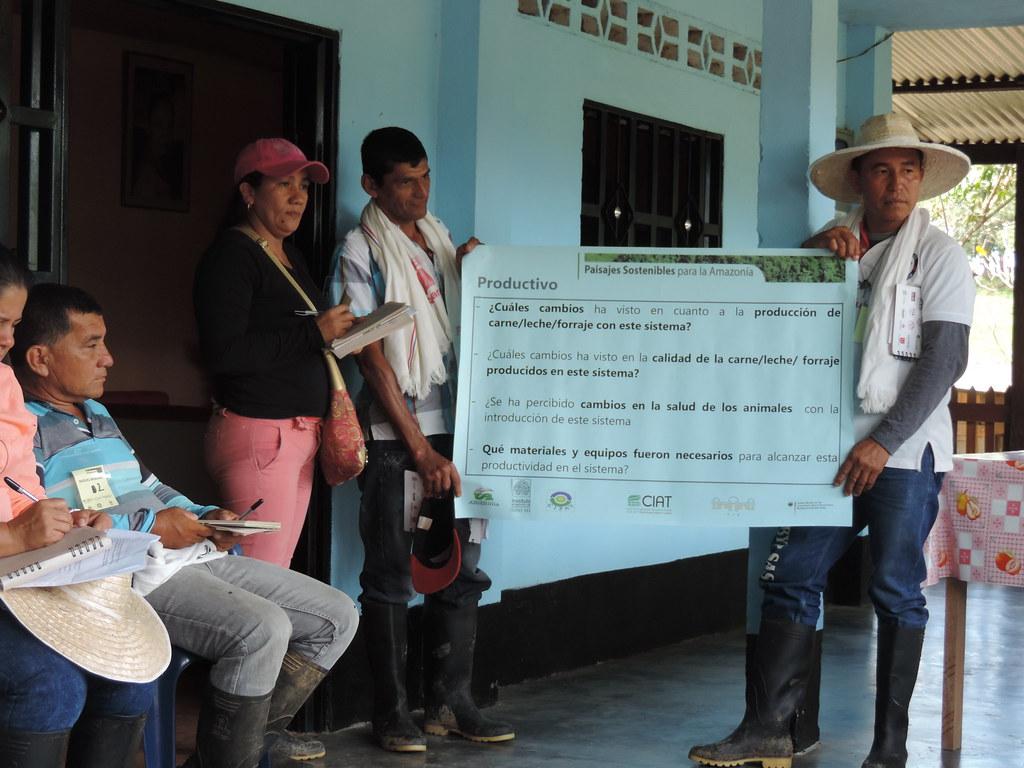 Grupo de ganaderos preguntando sobre los efectos de sistemas silvopastoriles en la producción de leche y carne