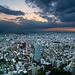 During our stay in Tokyo, we couldn't miss to visit the Metropolitan Government Building, one of the most famous  skyviews over the city. We came in a very lucky moment :-)  Filter: Formatt-Hitech GND 0.9 Reverse Grad