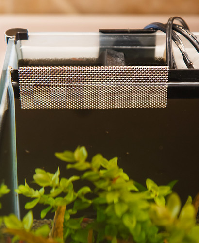 stainless steel mesh overflow cover for fluval spec v