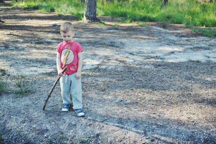 woodland ponder