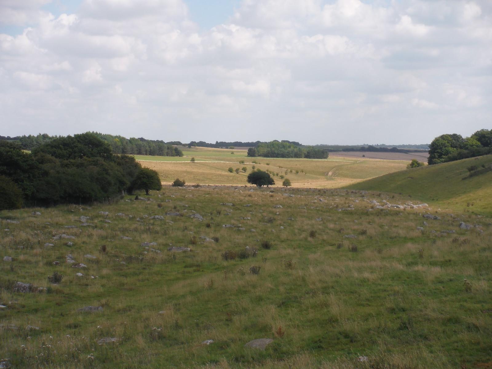 Fyfield Down Sarsen Stone Field, view from the West SWC Walk 255 Pewsey or Marlborough Circular via Avebury