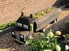 Lorry-shaped garden planter