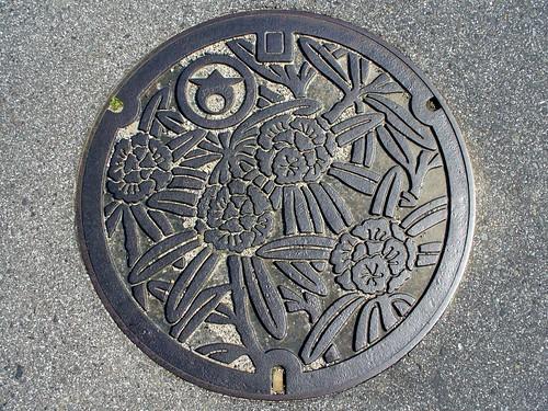 Daian Mie, manhole cover (三重県大安町のマンホール)