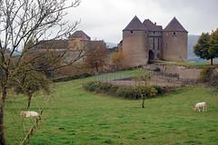 2016-10-24 10-30 Burgund 179 Berze-La-Ville - Photo of Clessé