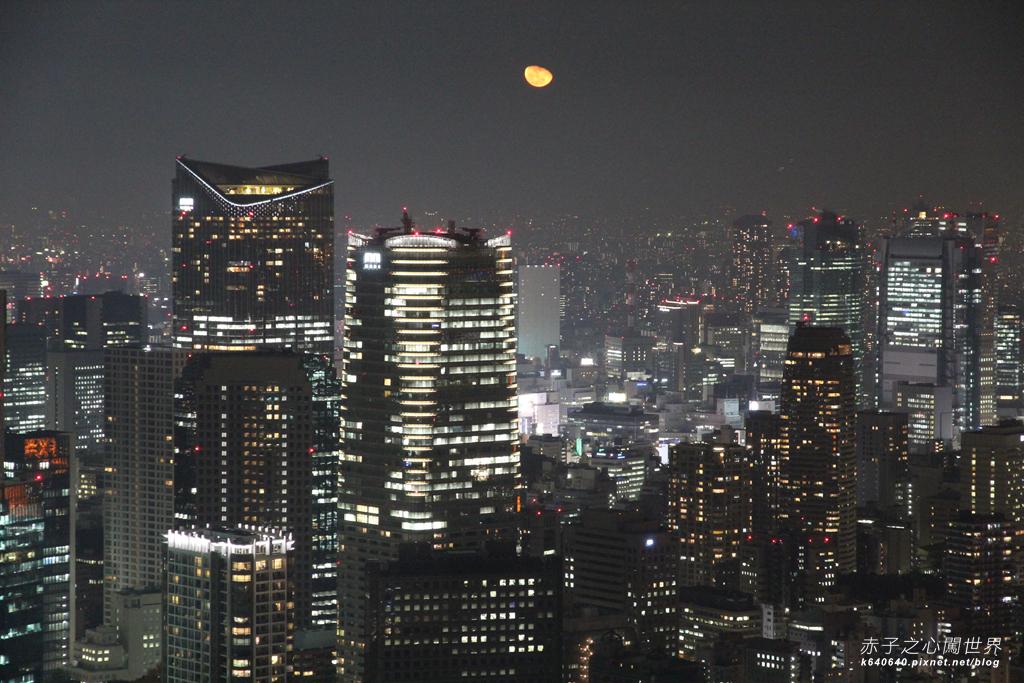Tokyo Winter Illuminations- 六本木之丘-IMG_9983074