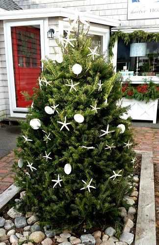 Christmas Tree By The Sea with Starfish by Lapdog Creations