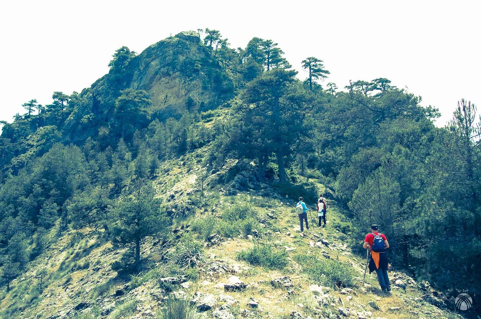 En la cresta cimera de Poyo Alto. Sierra de Segura