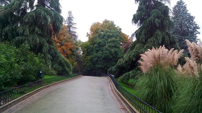 camino del otoño 2