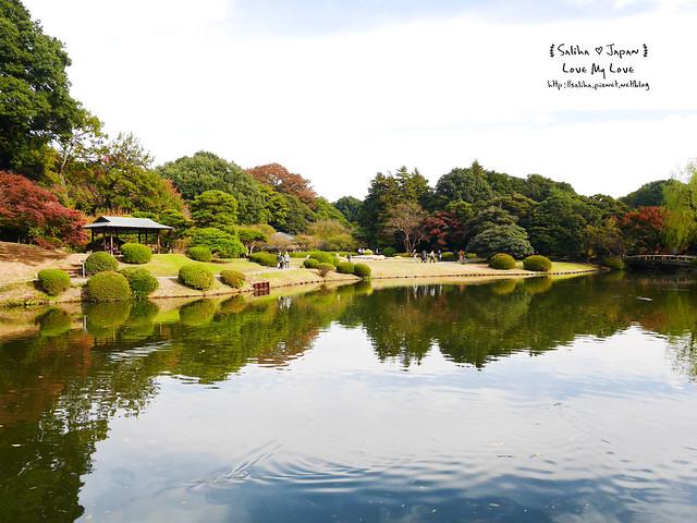 日本東京自由行新宿御苑庭園景點 (25)