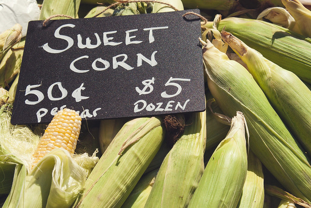 Dodge County Farmers Market • Madison, WI