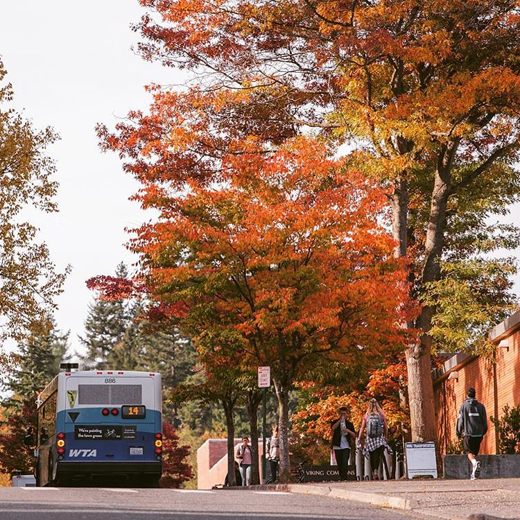 Autumn definitely has a grip on campus. Loving these colors! #fallatwestern