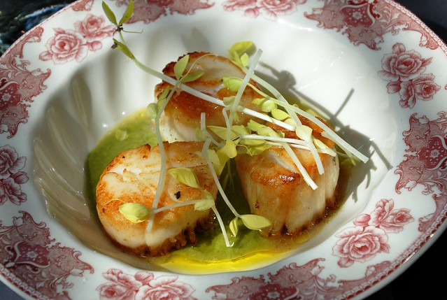 Pan Roasted Scallops with Green Sauce