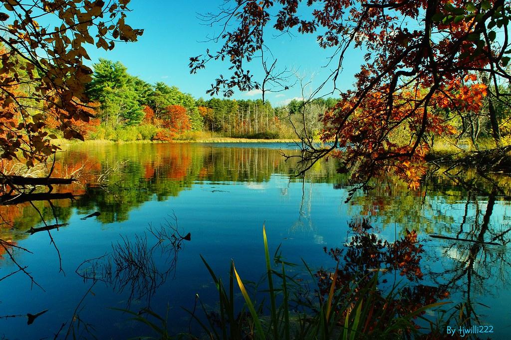 Vadnais Lake Autumn Reflection_04965