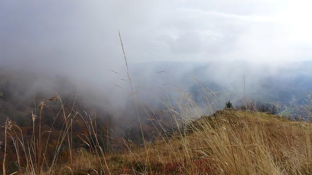 belchen, schwarzwald