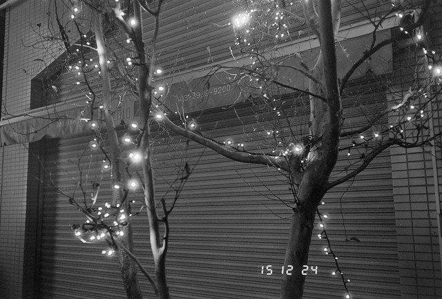 X'mas Illumination