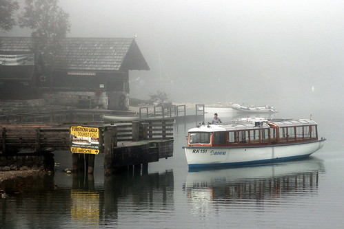 A Misty Mrning At The Lake