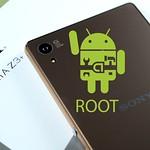 Root Xperia Z3+ Dual E6533 Marshmallow 6.0.1