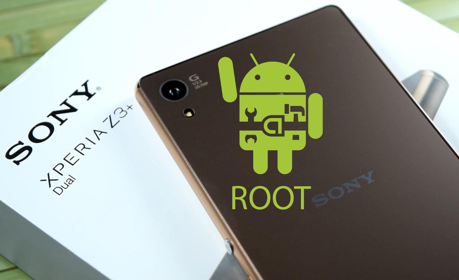 Root E6553
