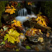 Mini-Waterfall by Ernie Misner