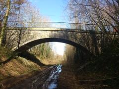 Sur l'ancienne ligne de la Possonnière à Niort(4)