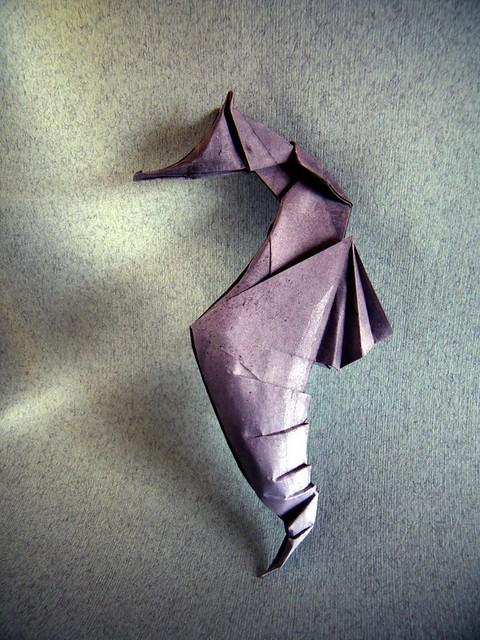 Seahorse - Ta Trung Dong