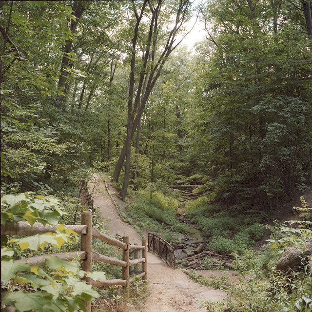 Glenn Stewart Trail IV